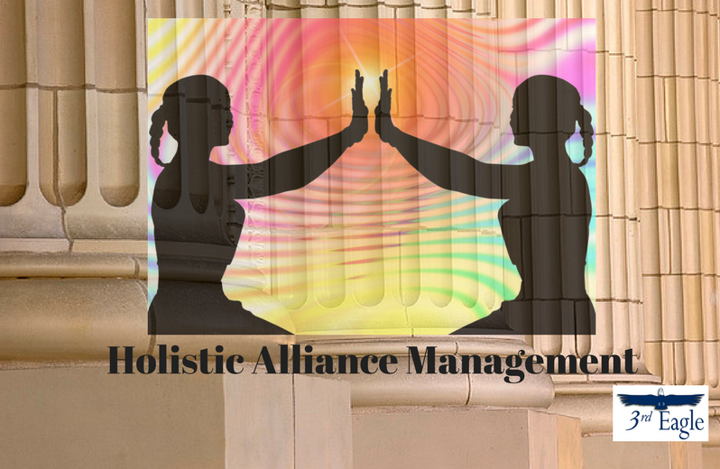 Holistic Alliance Management